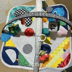 Baby Einstein Sensory Play Space Newborn-to-Toddler Discovery Gym, USED