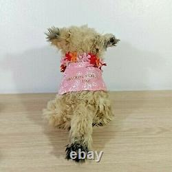 Einstein Retour Vers Le Futur Dog Plush Doll Universal Studio Japon Usj Hawaii 8
